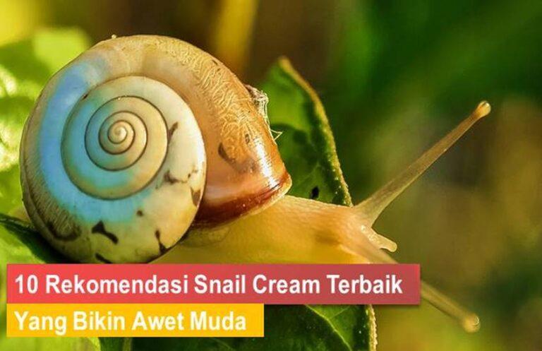 Snail Cream Terbaik